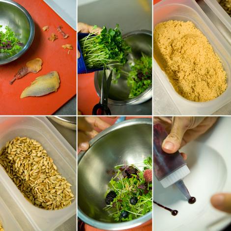 ricette_piccione_bowerman_ingredienti