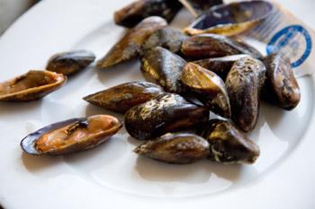 zazzeri-pesce-crudo-distinguere-cozza-pelosa