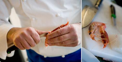 zazzeri-pesce-crudo-distinguere-gambero-rosso