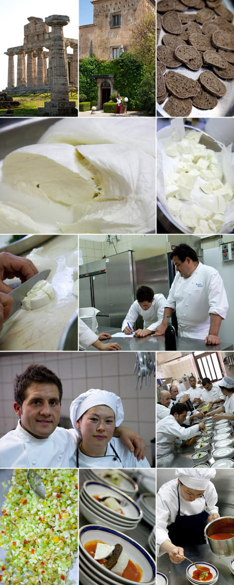 Gennaro-Esposito-chef-Paestum-bufala-1