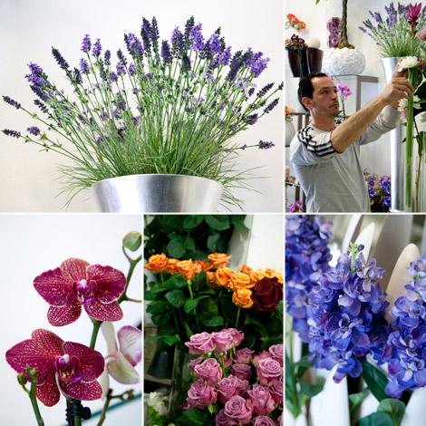gennaro-esposito-fornitori-fiori