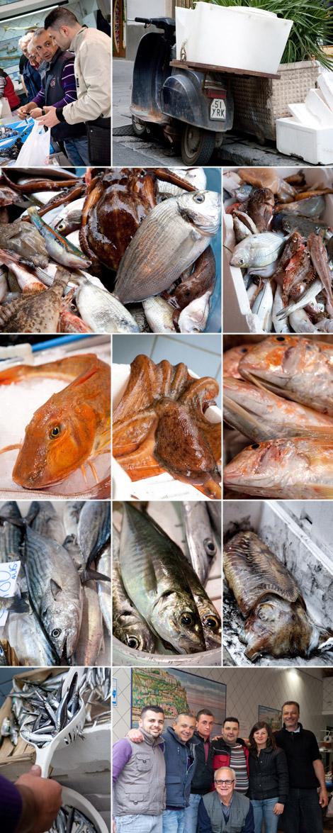 gennaro-esposito-fornitori-ittica-maestrale