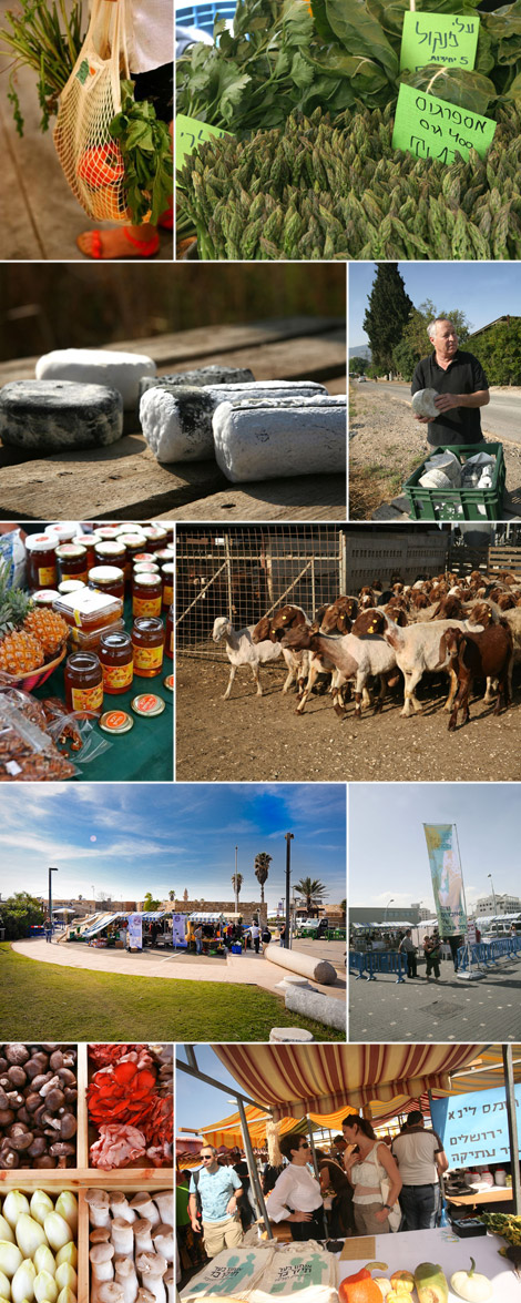 mercati-della-terra-tel-aviv
