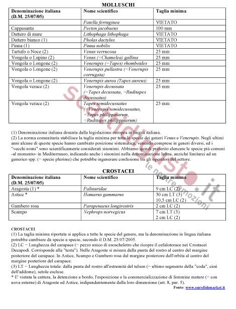 REGOLAMENTO-(CE)-1967-2006-TAGLIE-MINIME-IN-VIGORE-NEL-MEDITERRANEO-2