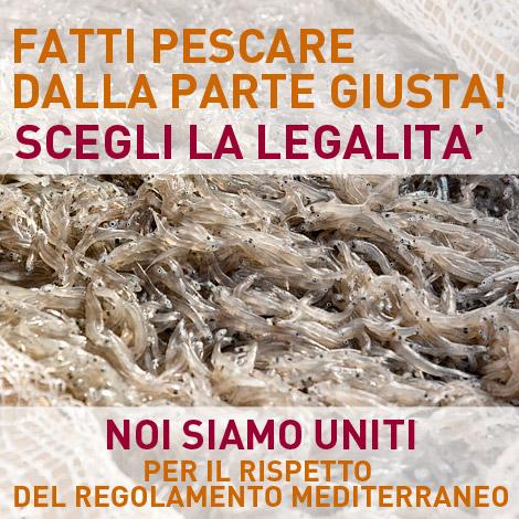 campagna-pesca-legale-UNITI-470