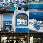Un Riccio delizioso sull'isola di Capri