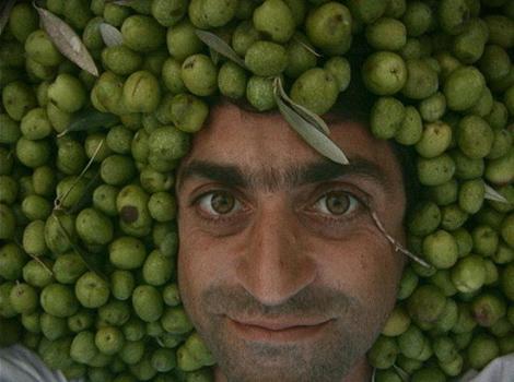 cedric-casanova-tete-olives
