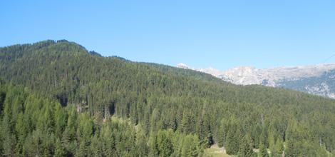bocchetti-san-cassiano-montagna-verde