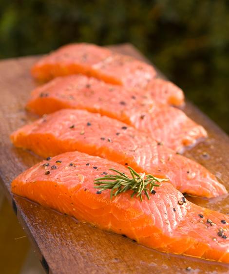 filetti-di-salmone-AquaBounty