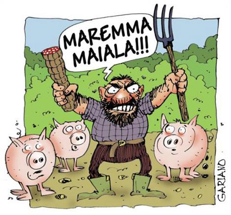 maremma-maiala
