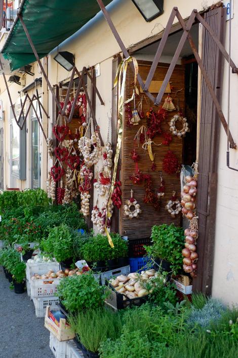 terracina-rinaudo-aromi