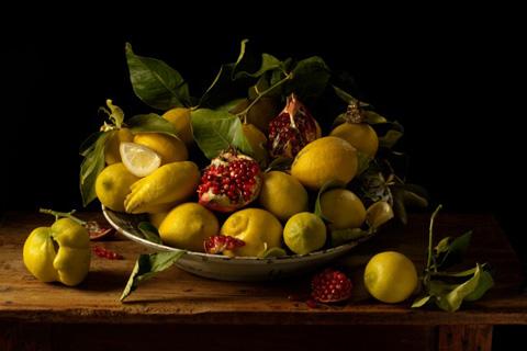 FIPC-tavormina_paulette_lemon