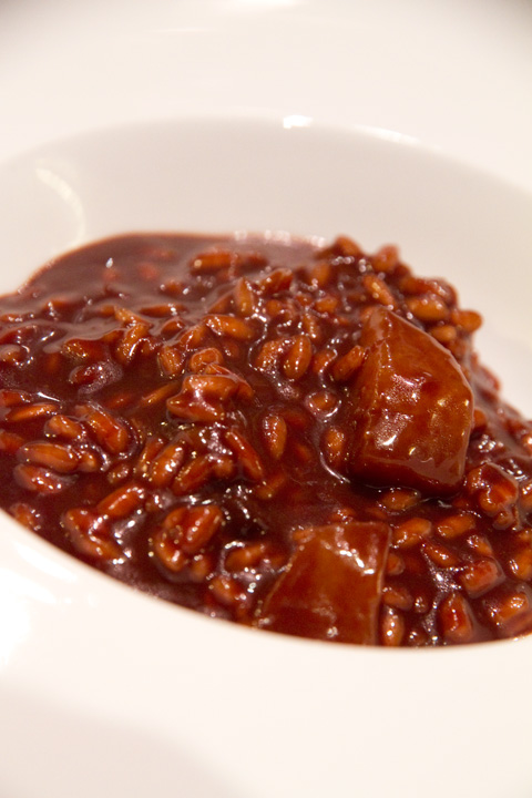ricetta-risotto-cioccolato-piatto-2