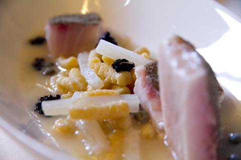 piastrino-minestra-passatelli