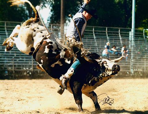 rodeo-news.boisestate