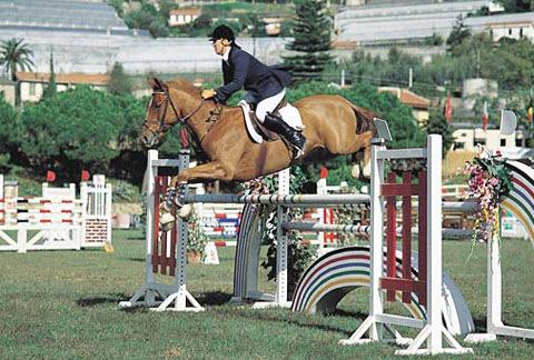 salto-equitando.com