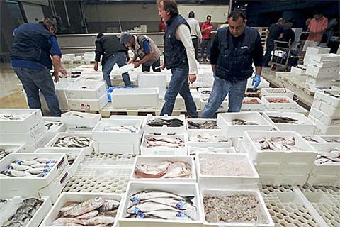 sequestro-pesce