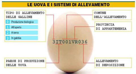 etichette-uova