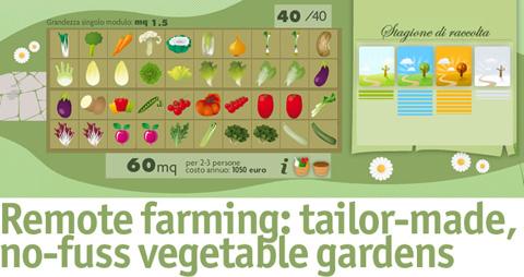 le-verdure-del-mio-orto-spring-wise
