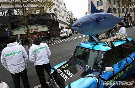 novembre-2010-tonno-rosso-parigi