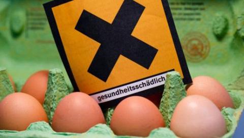 uova-diossina-Germania-epa