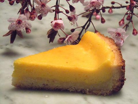 La ricetta buona della crostata di crema con la frolla in for Pasta frolla planetaria