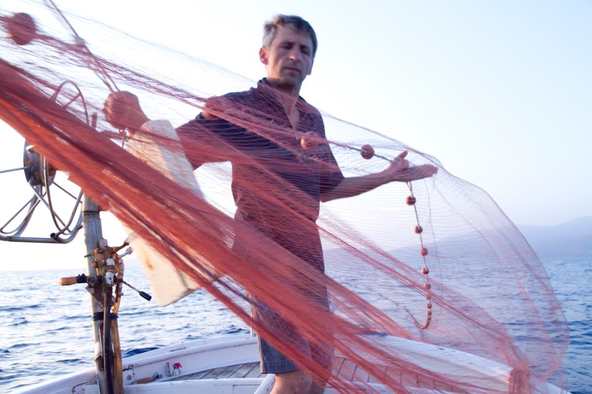 Petrini hemingway e le alici nel mare di angelo vassallo - Rete da pesca per decorazioni ...