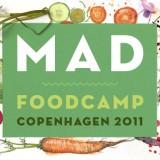 MAD FoodCamp. Perché l'evento di Redzepi non è roba da gastrofighetti e l'Italia è indietro