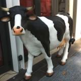 Roma | Tragedia a Testaccio! Arriva la mucca Roadhouse Grill