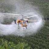 Pesticidi nel piatto dei bambini. A casa e a mensa