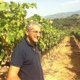 Stelle del Sud | Le Terre del Gufo con il vino alla francisi