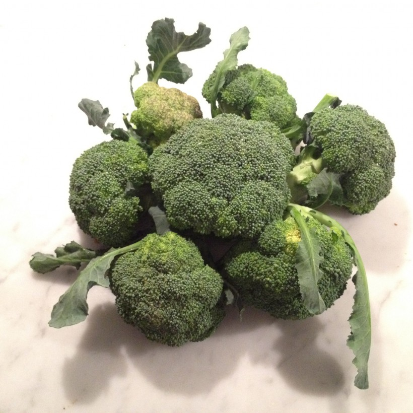 broccoli-casone-q