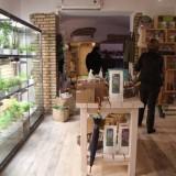 Nuove aperture | Pane, insalate e cortesia al Rione Monti