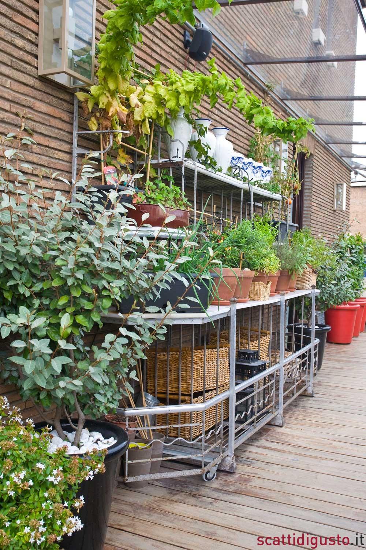 Orto urbano l 39 architetto in terrazza slow food grow the for O giardino di pulcinella roma