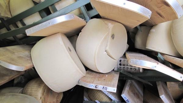 Parmigiano terremotato in tagli da 1 kg in vendita diretta a Campagna Amica