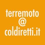Terremoto. La mail per comprare il parmigiano è terremoto@coldiretti.it