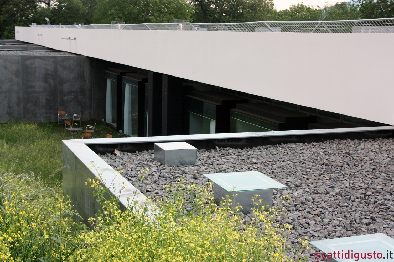 Il minimalismo agricolo di antonello colonna al for Costo della costruzione di una sauna domestica