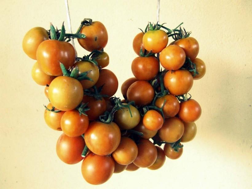 come-fare-i-pomodori-appesi-04