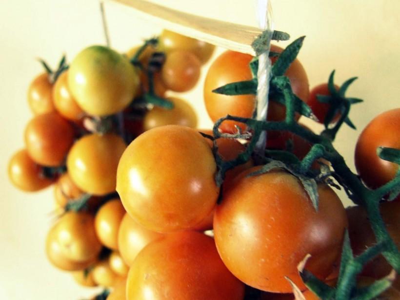 come-fare-i-pomodori-appesi-05