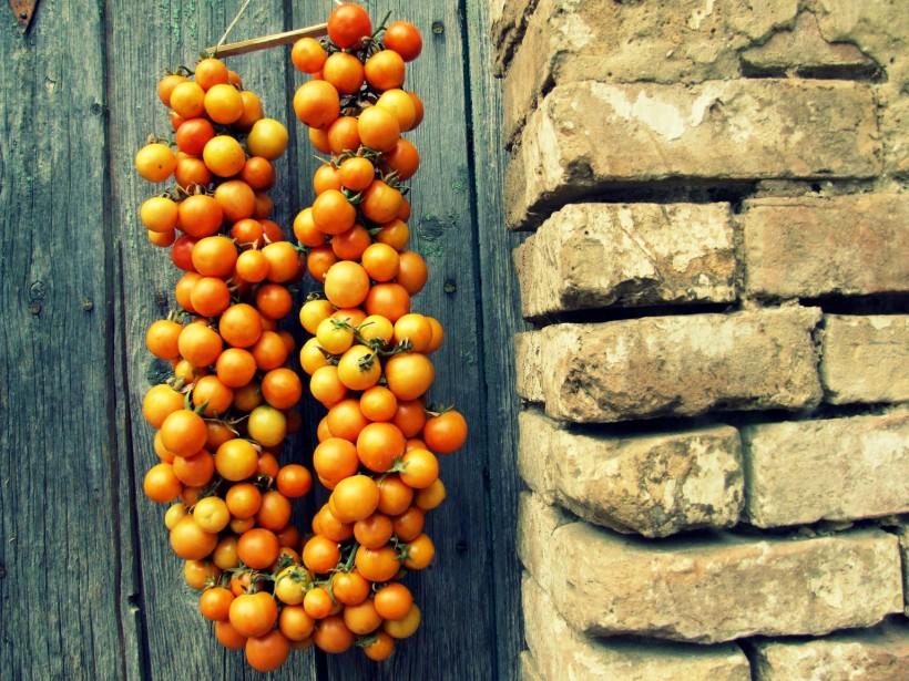 come-fare-i-pomodori-appesi-06