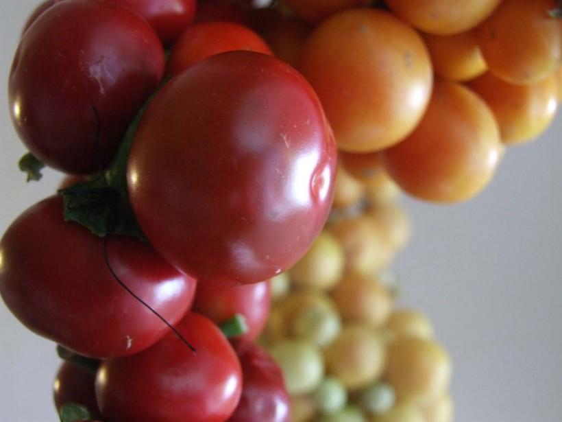 come-fare-i-pomodori-appesi-07