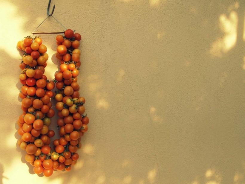 come-fare-i-pomodori-appesi-08