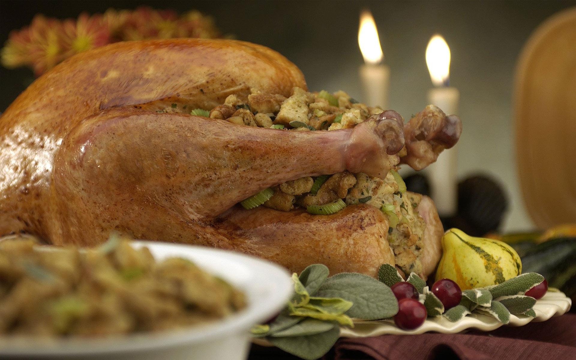 Thanksgiving tacchino