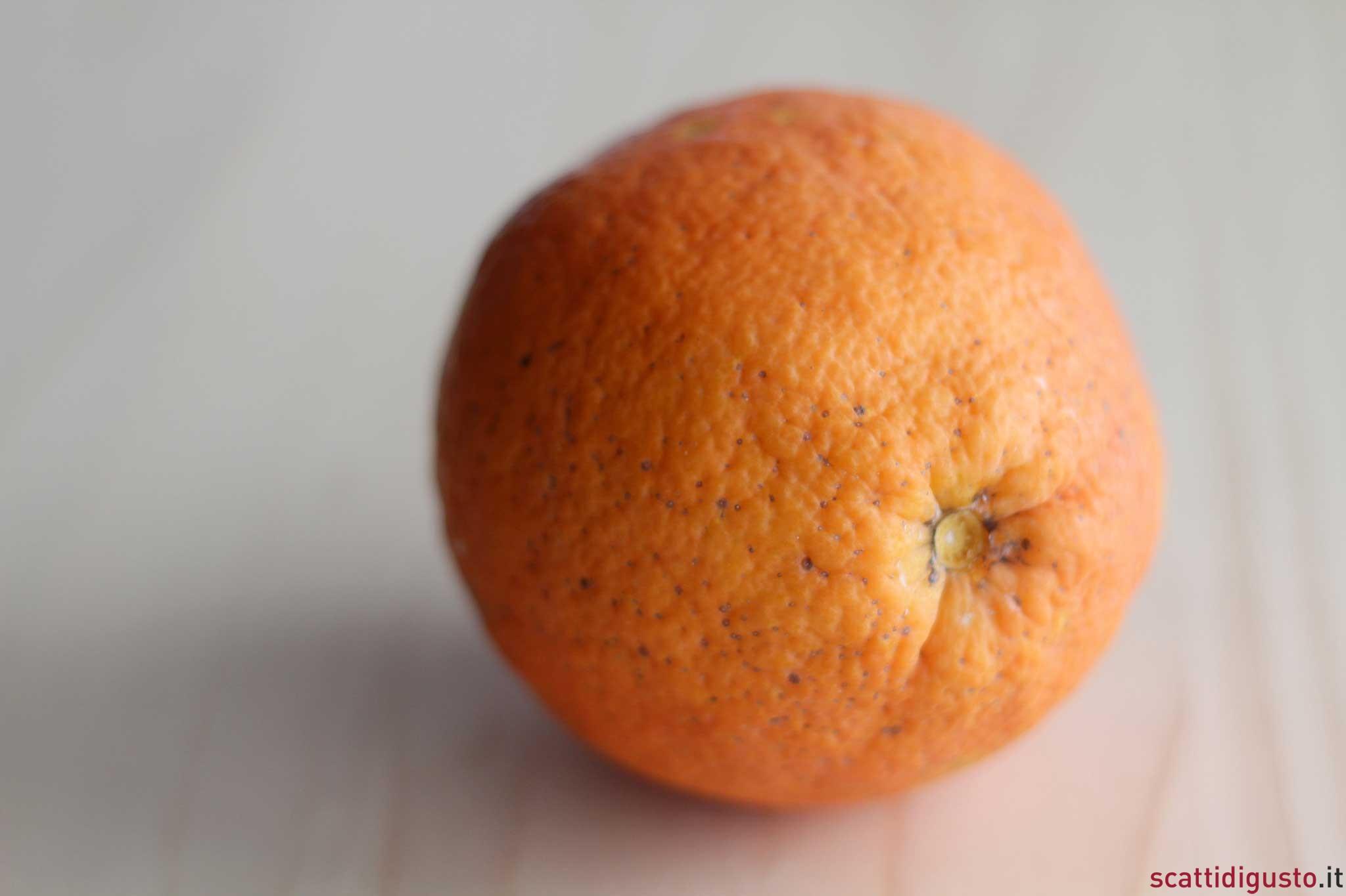 arancia zona arancione scuro