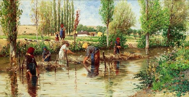 coltivazione agricola canapa