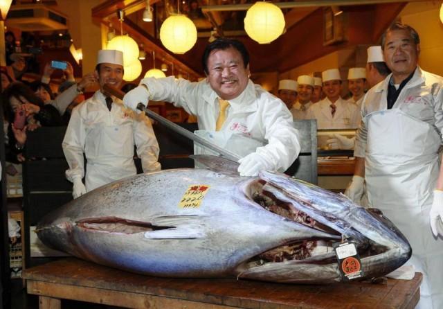 tonno rosso da record
