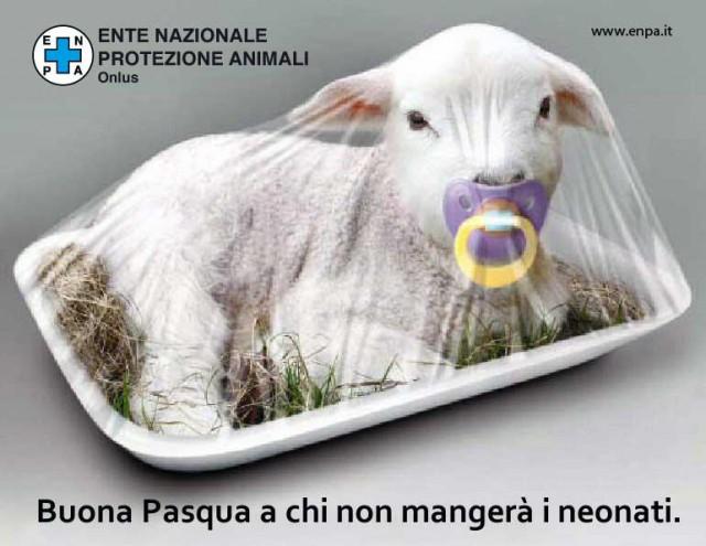 Buona-Pasqua-Ente-Protezione-Animali