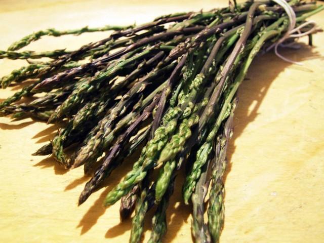 asparagi-selvatici-04