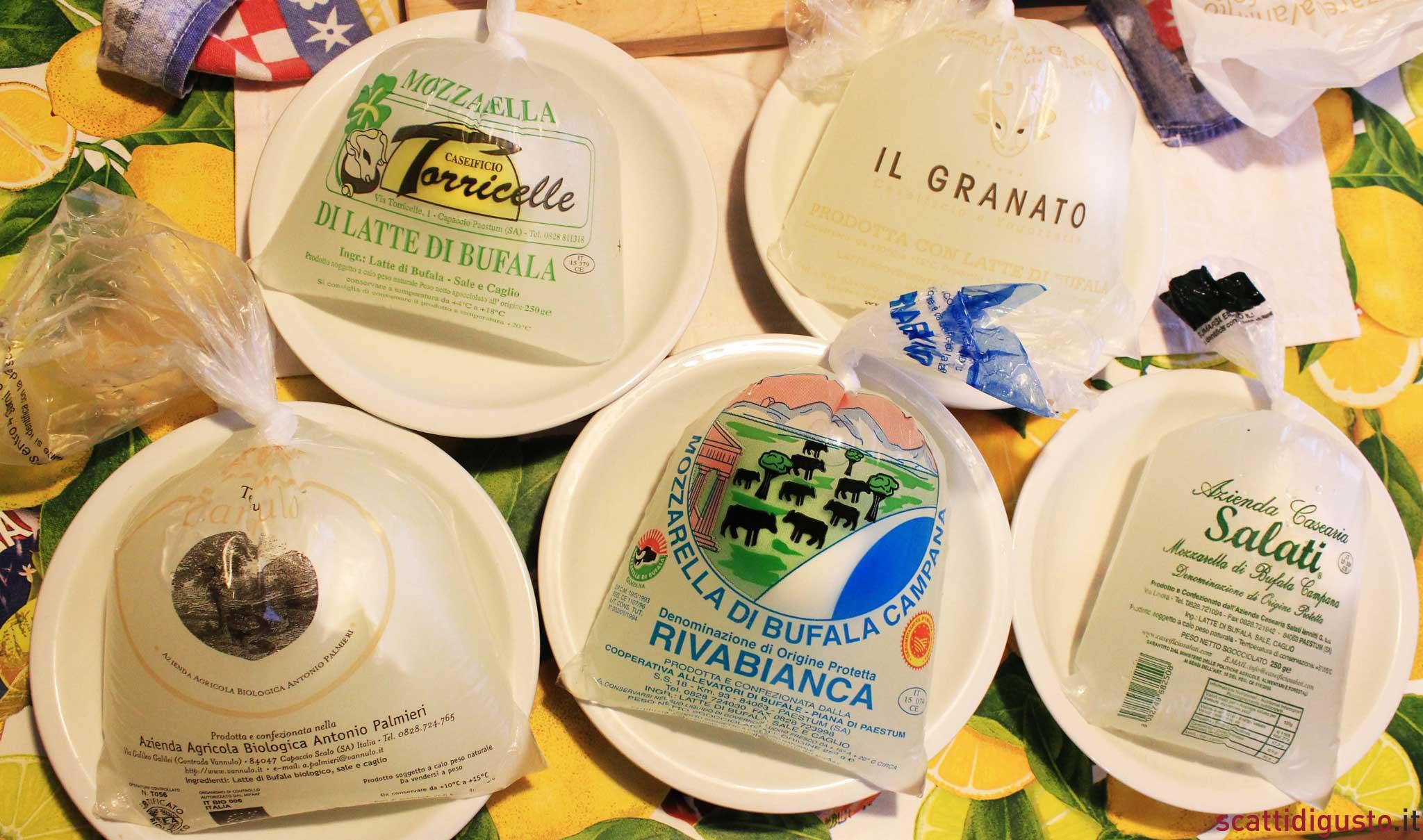 Mozzarelle-bufala-Paestum-buste