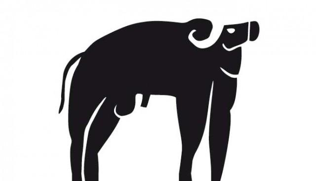 bufalo-nju